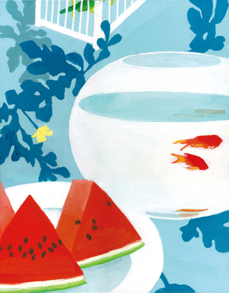 watermelon, goldfish, summer