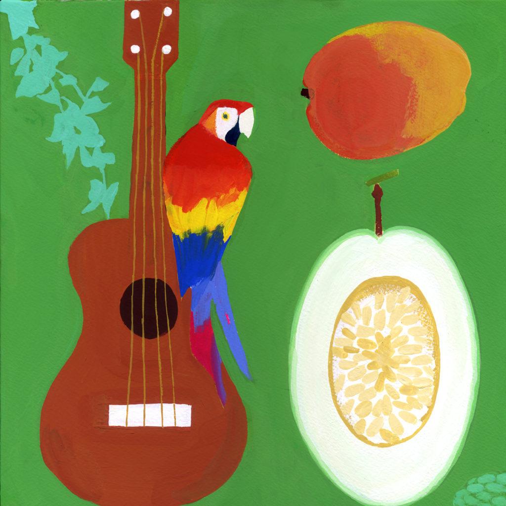 mango, parrot, guitar, summer